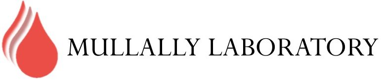 Mullally Laboratory